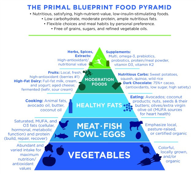 primal health food pyramid
